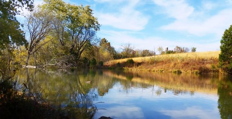 Tebbs-Bend-Green-River-nature-trails_Beaver-Pond-Trail-1600x1200