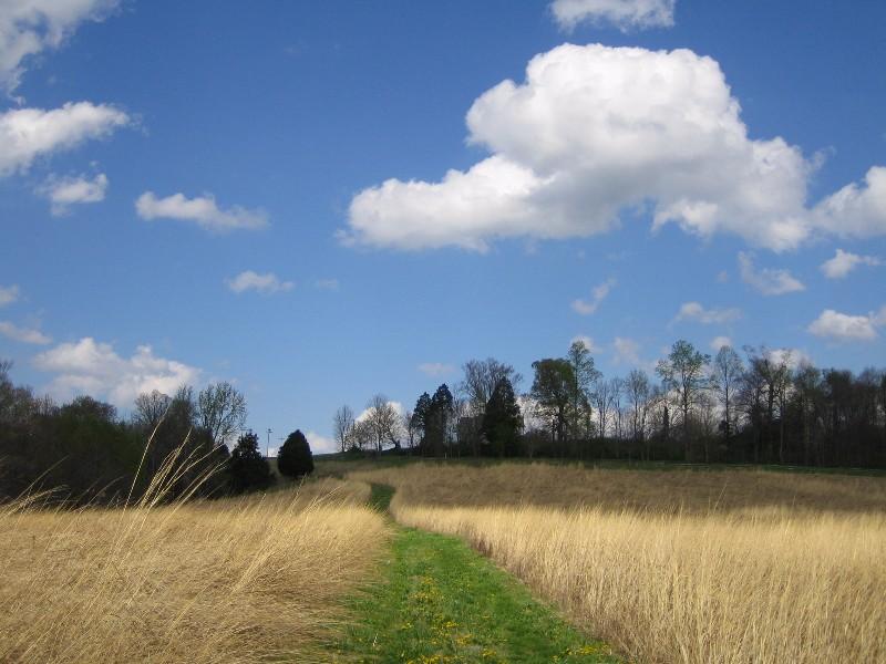 Tebbs-Bend-Nature-Area