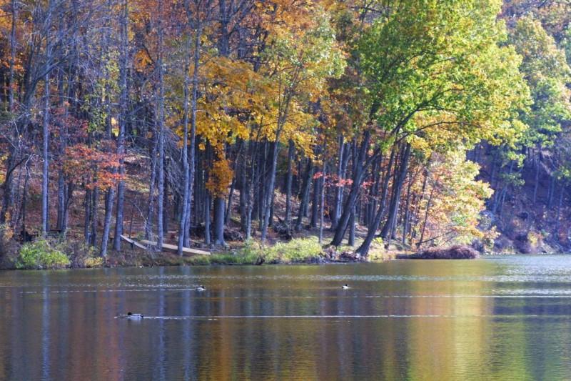 Campbellsville-City-Lake-1280x768
