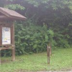 Wilson Creek recreation area primitive tent campground green river lake