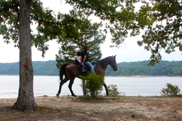 Horseback riding equestrian trails Green River Lake State Park Campbellsville KY