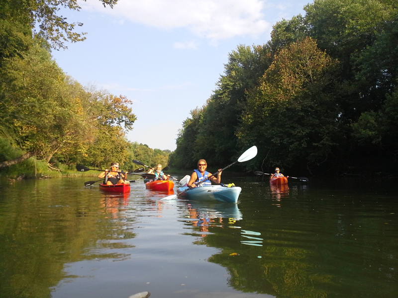 Canoe Kayak Rentals Paddle Green River Lake Campbellsville KY